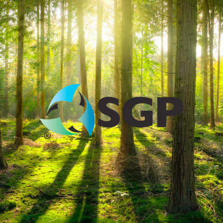 Sustainable Green Printing Partnership (SGP) Continuous Improvement Project